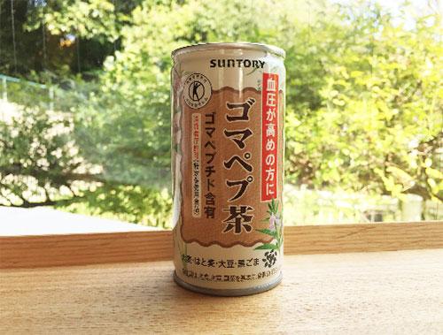 goma_taiken01